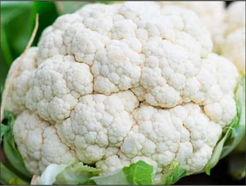 Brassica Cauliflower- Early Snowball