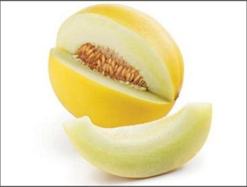 Melon Golden Honey Dew